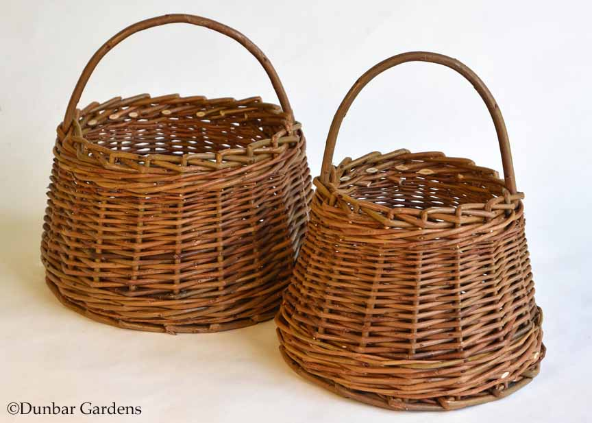 Katherine Lewis willow basket class for NWBW Guild Basket Day