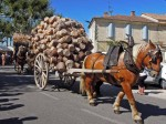 Vallabregues basketry procession